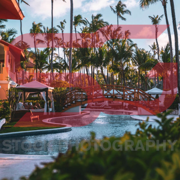 Tropical-Resort-Water-And-Palm-Trees-Stable-Gray-Stock-Photography